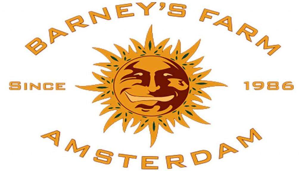 Barney's Farm es un banco de semillas de origen holandés.