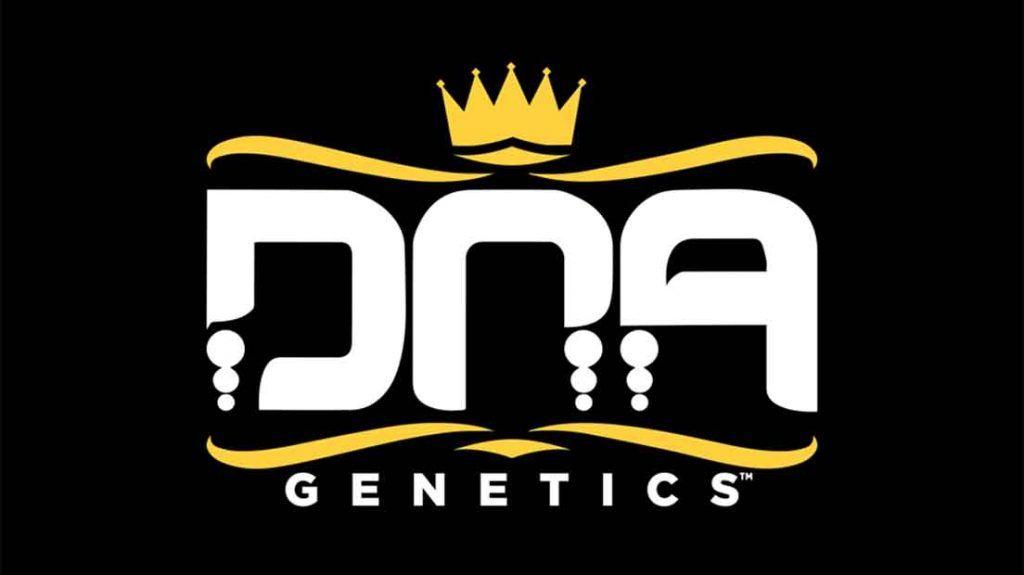 DNA es un banco de semillas que surge en Ámsterdam en 2004.